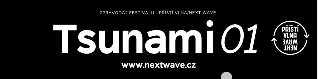 na-web_tsunami